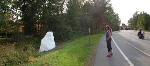 Vita sten vid Gränsberget