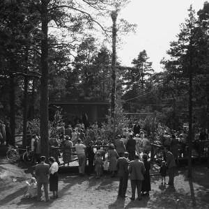 Midsommar 1950, mot söder.