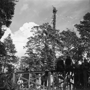 Midsommar på dansbanan, 1948. (Enl. B. S.)